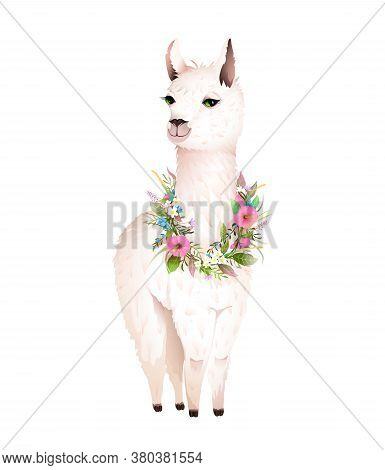 Beautiful White Lama Wearing Flowers Laurel, Romantic And Cute Animal Print Design. Llama Vector Car