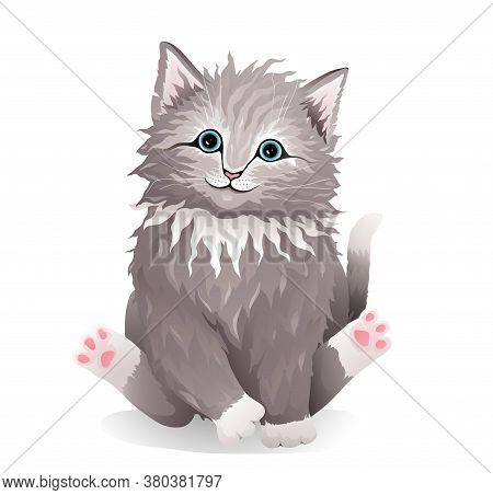 Cute Pussy Grey Cat Adorable Fluffy Pet, Realistic Illustration For Your Apparel T Shirt Or Other De