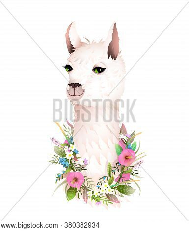 Romantic Female Lama Portrait In Flowers Laurel, Tee Shirt Beauty Design Or Other Apparel Animal Pri