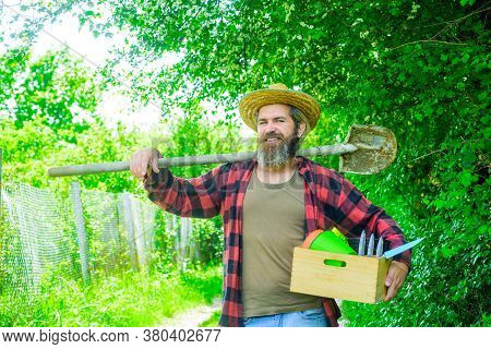 Happy Bearded Man In Garden. Gardening. Eco-farm. Work In Garden. Bearded Man With Gardening Tools.