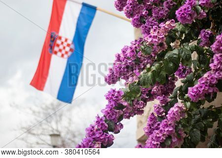 Croatian Flag On A Pole Waving On The Wind, Beautiful Pink Flowers In The Foreground. Celebrating Ol