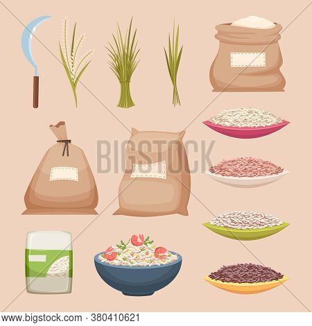 Rice Grained. Storage Sacks Rice Products Grained Agricultural Food Vector Illustrations In Cartoon