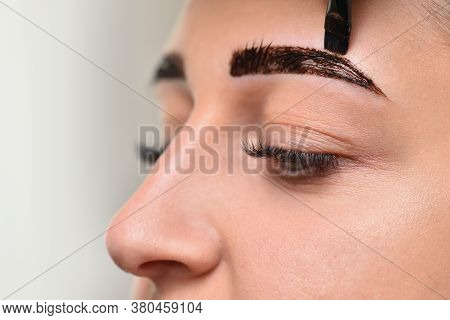 Eyebrow Coloring With Henna In A Beauty Salon Female Face Close Up