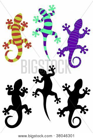 Gecko bis