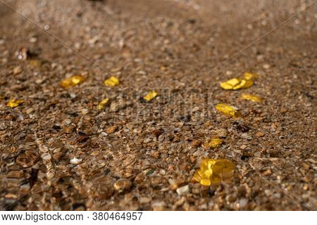 Pure Gold Nugget Ore Found In Mine With Natural Underwater Sources