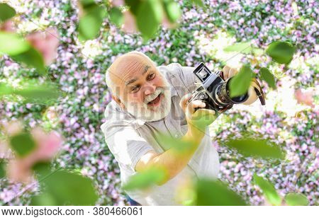 Education For Elderly. Vintage Camera. Photography Hunt. Old Happy Man Looking Upwards At Tree. Seni