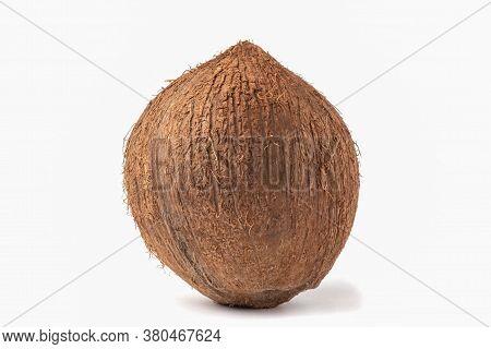 Whole Ripe Coconut Isolated On White Background.