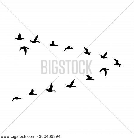 The Black Silhouette Of The Flock Of The Ducks Are Isolated On The White Background.