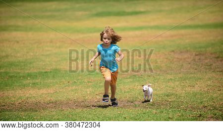 Young Boy Runs In A Green Field With His Pet. Puppy Running. Fun Games With Home Pet On Summer Vacat