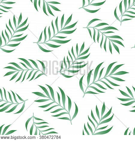 Tropical Seamless Pattern With Fern, Palm Leaves, Green Color Branches On White Background. Floral V