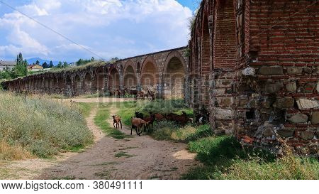 Goats Graze At The Ruins Of Ancient Aqueduct In The Middle Of A Field At The Outskirts Of Skopje, No