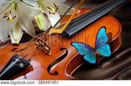 Bright Blue Morpho Butterfly And Violin. Violin And Lily On A Silk Background. Close Up