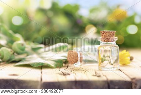 Essential Oil Or Oil For Natural Diseases Treatment In Glass Bottle On Wooden Table With Copy Space