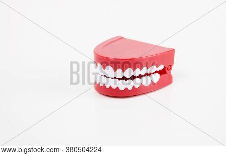 Studio shot of Chattering toy teeth