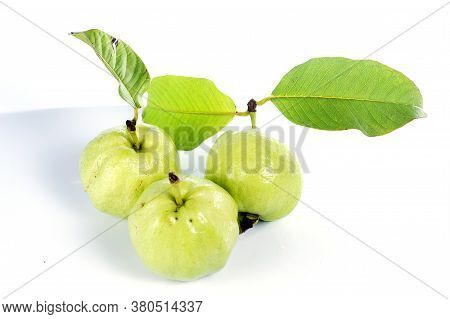 Fresh Guava Fruit Isolated On The White Background.f