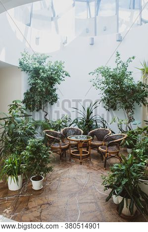 Wicker Rattan Furniture Surrounded By Green Plants In A Spacious Hall