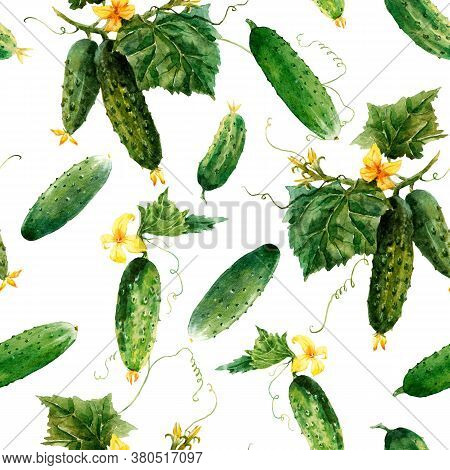 Beautiful Seamless Vegetable Pattern With Watercolor Summer Cucumbers. Stock Illustration.