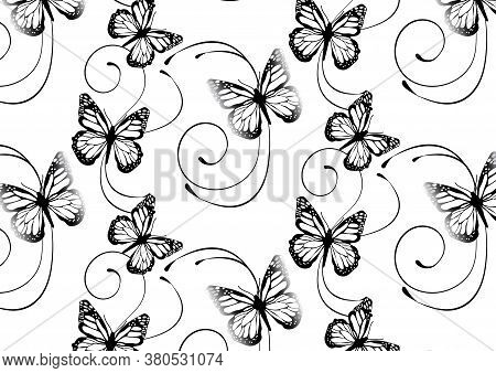 Set Butterflies Background. Entomological Collection Of Highly Detailed Design Butterfly. Retro Vint