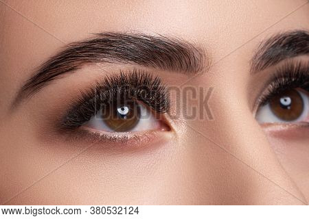 Beautiful Macro Photography Of A Woman's Eye With Extreme Makeup Of Long Lashes. Perfect Long Lashes