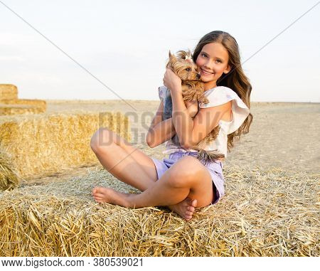 Adorable Smiling Little Girl Child Sitting On A Hay Rolls In A Wheat Field With Her Small Dog Pet Yo