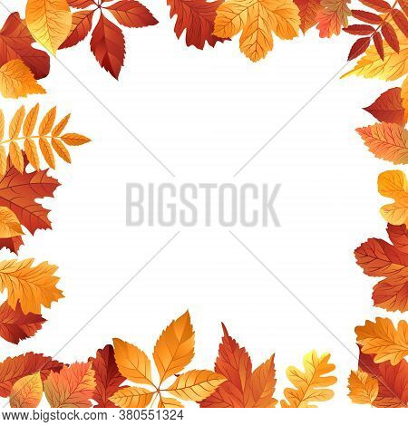 Vector Illustration Of Autumn Falling Leaves. Frame Isolated On White Background. Vector Autumn Back