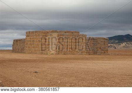 Piles of stacked rectangular straw bales. Gallocanta Lagoon Natural Reserve. Aragon. Spain.