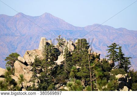 Pine Trees Surrounded By Rocks And Boulders With Arid Mountains Beyond Taken In The San Jacinto Moun