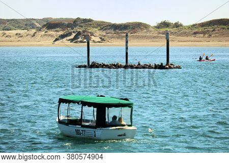August 3, 2020 In Morro Bay, Ca:  Tour Boat Which Offers Sightseeing Tours Of The Bay With A Wooden