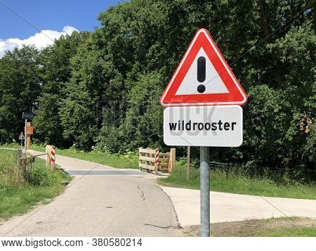 Dutch Traffic Road Sign Warning For A Cattle Grid.