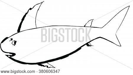 Flat Doodle Drawing Image Of Shark, Vector Illustration
