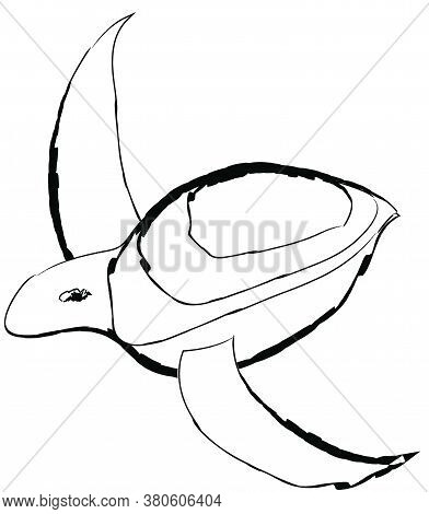 Flat Doodle Drawing Image Of Sea Turtle, Vector Illustration