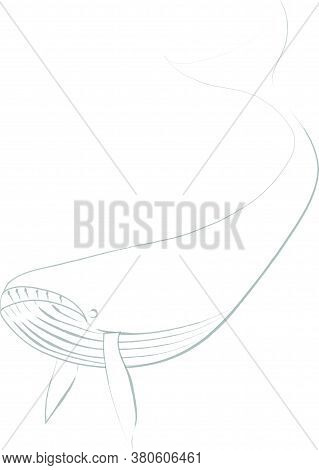Flat Doodle Drawing Image Of Whale, Vector Illustration