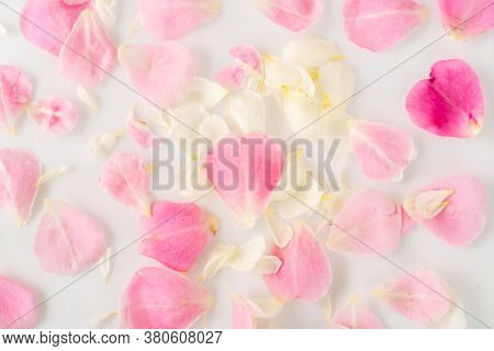 Background of beautiful rose petals.