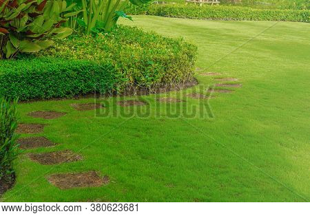 Pathway In The Garden With Green Lawns, Garden Landscape With Shrubs Views Of Curve Walkway On The G