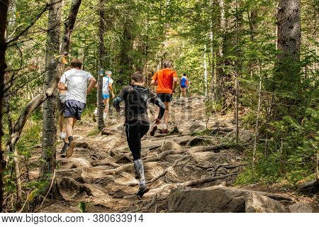 Group Of Male Runners Run Mountain Trail Over Rocks And Tree Roots