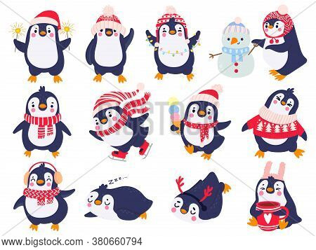 Penguin. Hand Drawn Cute Penguins In Winter Clothing And Hat, Merry Christmas Greetings Animals In O