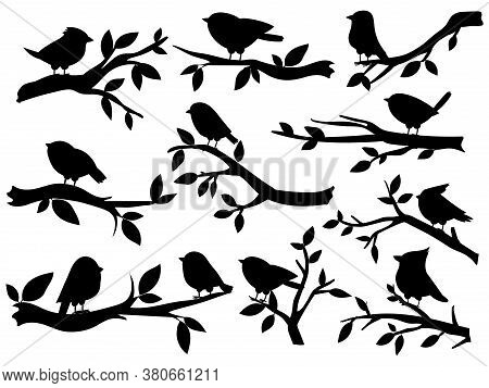 Bird And Twig Silhouettes. Cute Birds And On Branch, Romantic Spring Image, Black Sparrows On Tree,