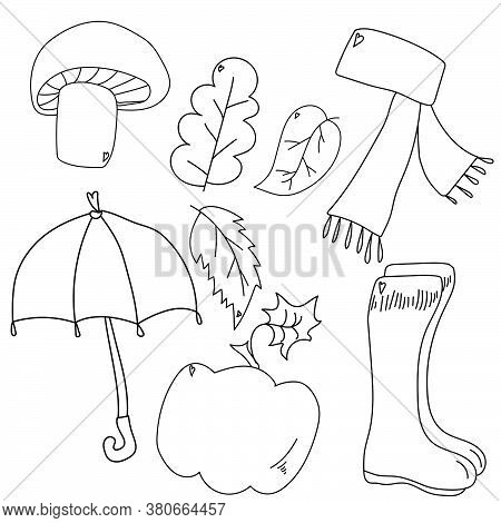 Autumn Walk Attributes: Mushroom, Leaves, Umbrella, Rubber Boots, Scarf And Pumpkin; Coloring Page F
