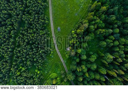 Aerial top down view of the rural road through the forest and green field