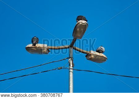 Three Pigeons Are Sitting On A Triple Lantern. Blue Sky.
