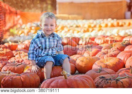 Cute Positive Little Boy Holding Pumpkin Enjoying Fall Activities At Pumpkin Patch, Halloween And Au