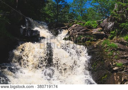Waterfall In Dense Forest. Mountain River. Woodland Creek. Water Flow With Splashes. Rocky Watercour