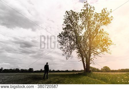 Lonely Adult Man Looks At A Tree. Sad And Thoughtful In His Depression. Shilouette Of Tree And Man