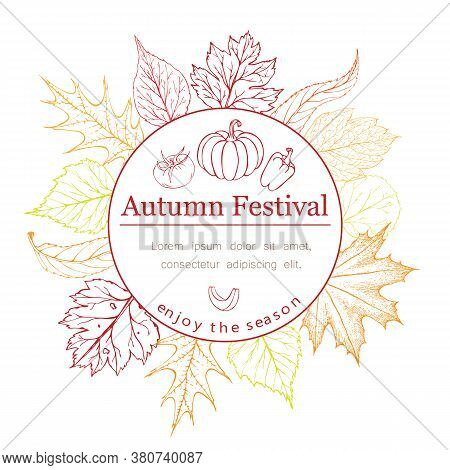 Autumn Seasonal Poster Or Banner With Autumn Leaves, Vegetables And Lettering In Fall Colors On Whit