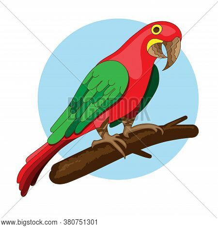 Vector Bird Illustration. Red Parrot On A Branch. Exotic Macaw