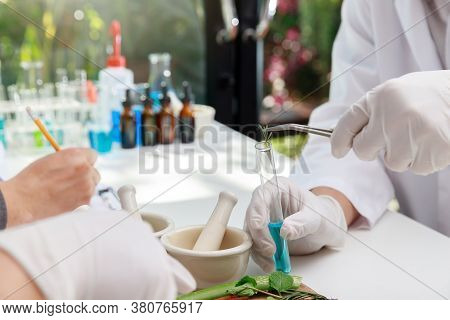 The Scientist Or Doctor Make Herbal Medicine From Herb In The Laboratory On The Table. Herb Medicine