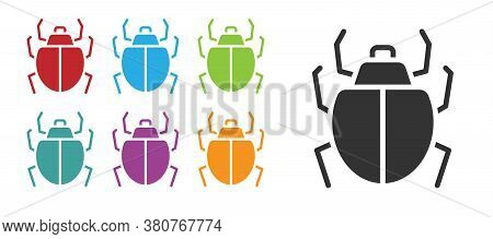 Black Mite Icon Isolated On White Background. Set Icons Colorful. Vector