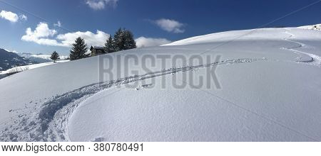 Ski Prints On Fresh Snow Covered Mountain Under Blue Sky