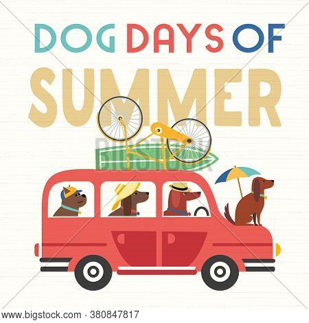 Dog Days Summer Time. Cute Comic Cartoon. Colorful Humor Retro Illustration. Cute Pet Dogs Riding Ve