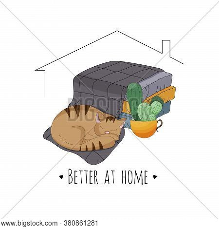 Cat Sleeping On The Blanket Near Cactus And Pillows, Better At Home Quote Vector Illustration